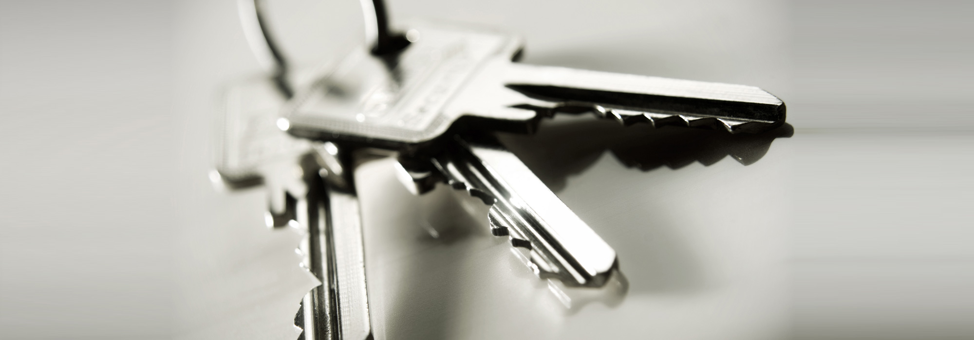 Lettings & Property Management